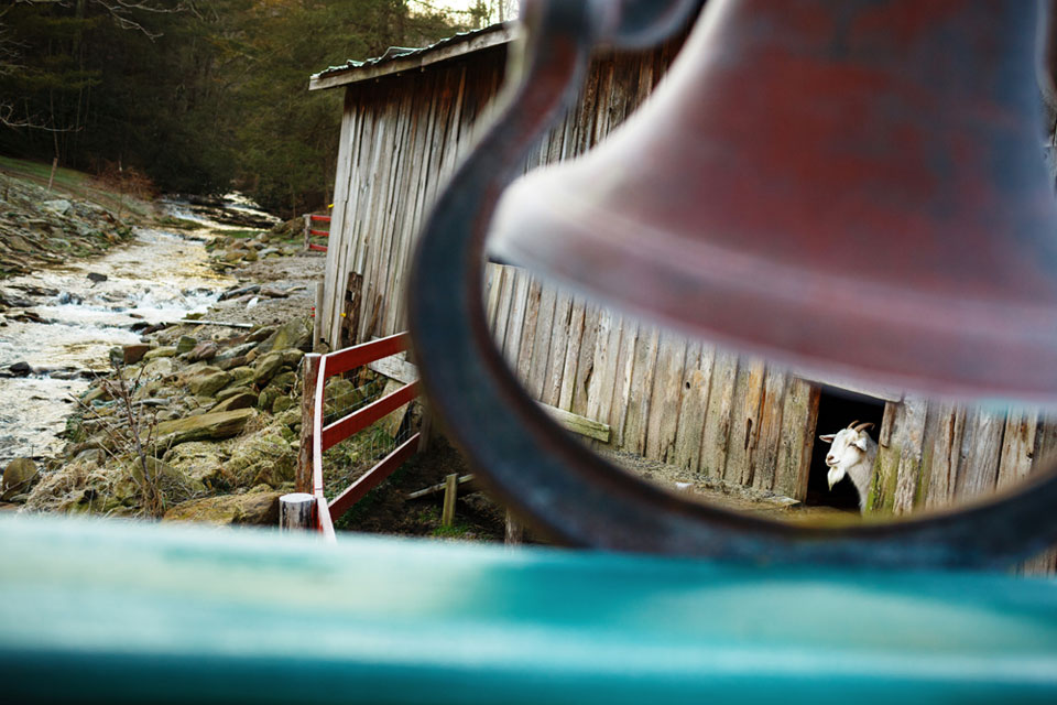 Appalachian+Trail-008-2418477575-O