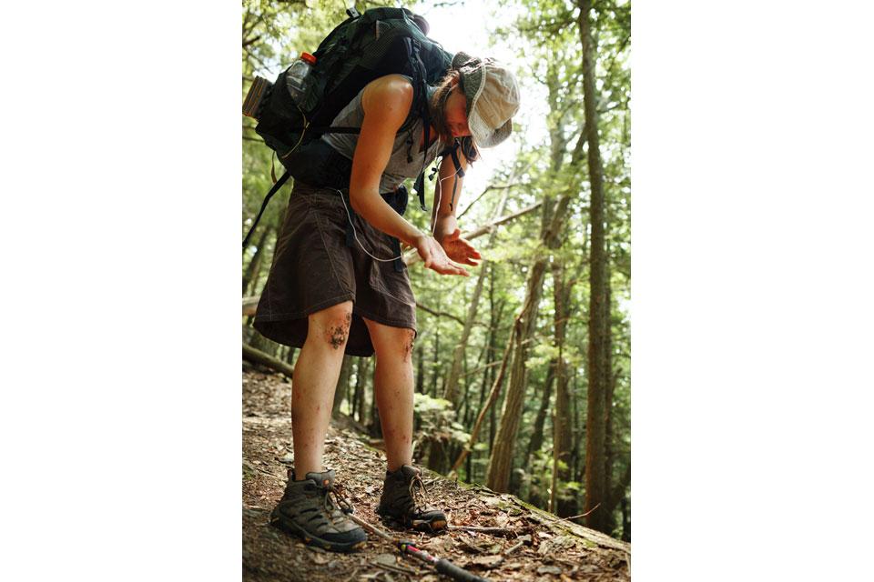 Appalachian+Trail-022-2418481033-O