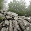 Appalachian+Trail-034-2418483641-O thumbnail