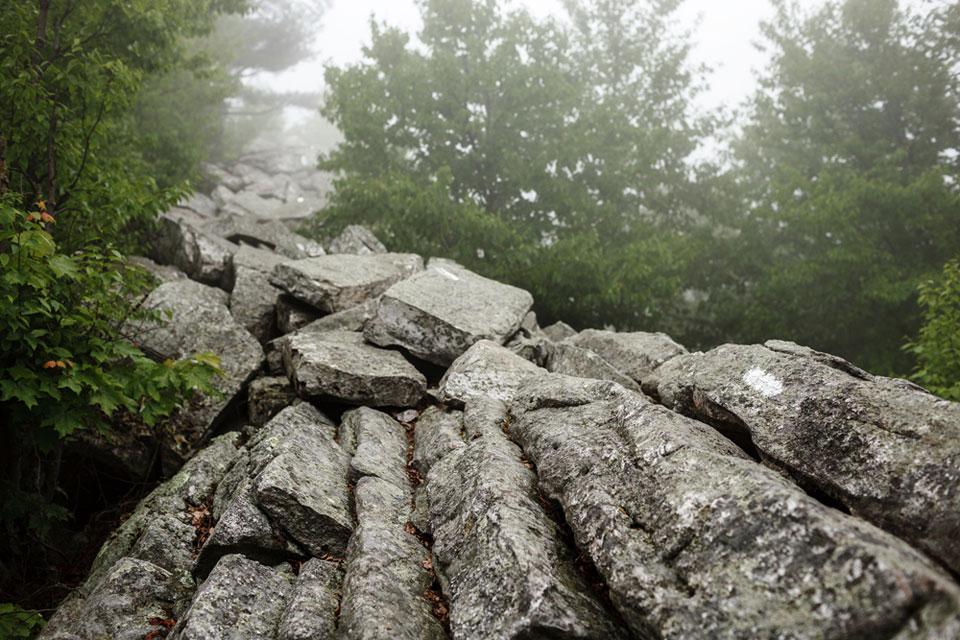 Appalachian+Trail-034-2418483641-O
