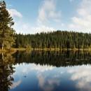 Appalachian+Trail-042-2418485488-O thumbnail