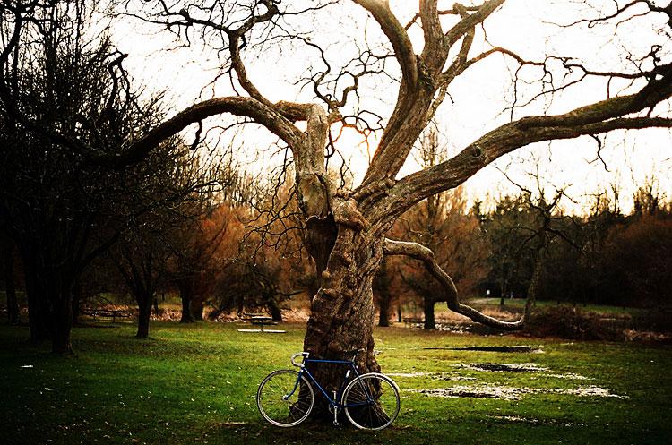 15-bikes-chris-webber
