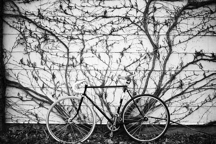 33-bikes-chris-webber