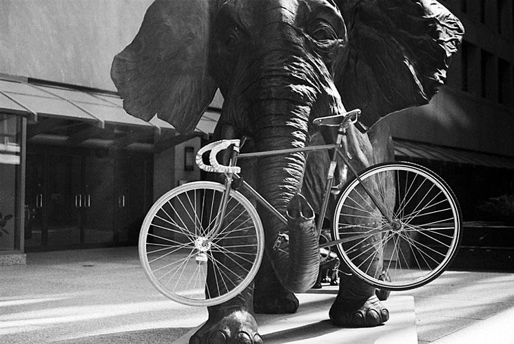 34-bikes-chris-webber