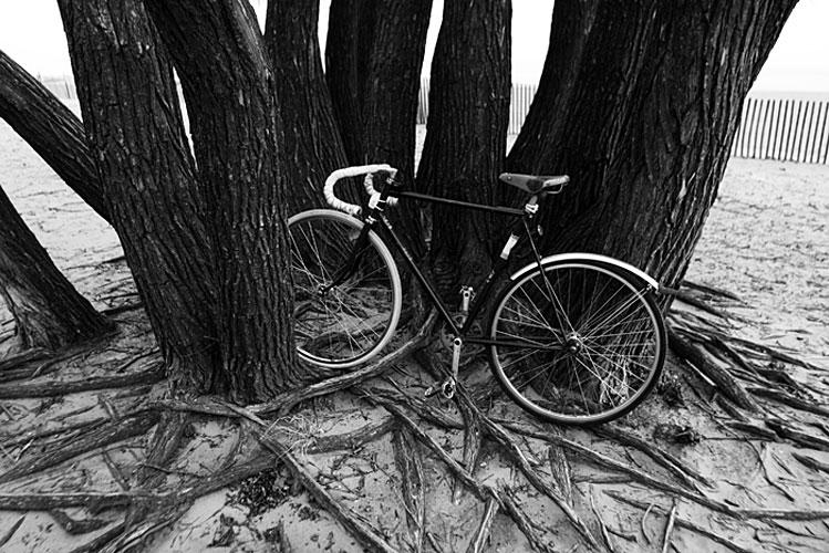 37-bikes-chris-webber