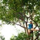 Kalalau-015-2418475095-O thumbnail