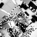 05-YETE-program-photographs thumbnail