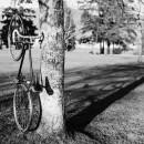 13-bikes-chris-webber thumbnail