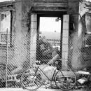 23-bikes-chris-webber thumbnail