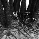 37-bikes-chris-webber thumbnail