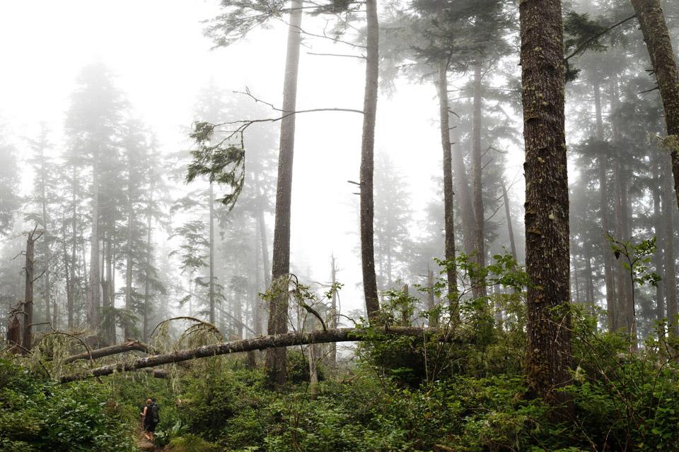 West-Coast-Trail005