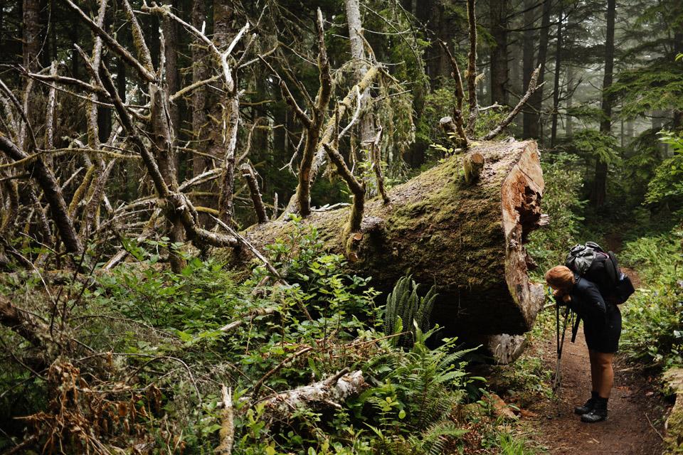West-Coast-Trail017
