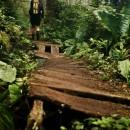 West-Coast-Trail022 thumbnail
