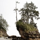 West-Coast-Trail001 thumbnail